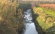 Barletta: iniziati i lavori di manutenzione del canale Ciappetta-Camaggio