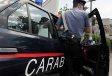 Barletta e Canosa – Controlli e denunce in 4 aziende agricole