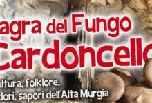 Minervino – Sagra del Fungo Cardoncello, 21^ edizione