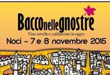 """Puglia – Torna """"Bacco nelle gnostre"""""""