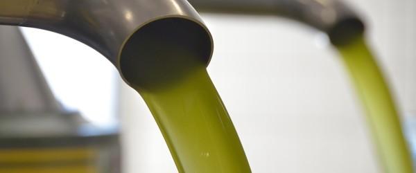 Andria – Olio extravergine d'oliva