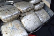 Bari – Grosso colpo ai grossisti della droga