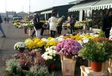Trani – Stop alla vendita di fiori nel cimitero: i gestori costituiscono un'associazione