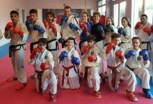 Taekwondo e kick boxing: doppio impegno per la Fitsport Italia
