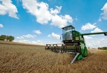 Bando ismea per l'insediamento di giovani in agricoltura con agevolazioni fino a 70.000 euro