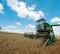 """Psr, stanziati altri 20 mln per attività extra-agricole. Copagri : """"Liberare le risorse non spese"""""""