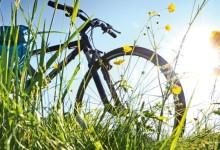 Barletta – Maggio ecologico 2016: il calendario delle iniziative