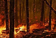 VVF – la Bat senza squadra per l'attività di assistenza agli incendi boschivi
