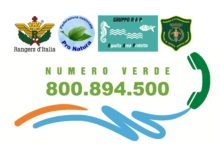 Progetto Numero Verde: giugno-settembre piu di 300 segnalazioni