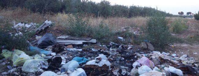 Bisceglie – Contrasto all'abbandono dei rifiuti, all'evasione Tari, pulizia città