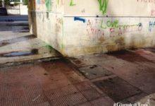 Trani – Il sindaco firma un'ordinanza  per la prevenzione e il controllo dell'infestazione da blatte.
