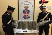 Bisceglie – Nascondevano 3 kg di marijuana nel cofano dell'auto: arrestati due albanesi