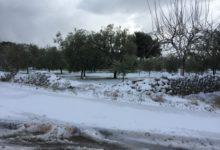 La neve imbianca La BAT, tranne Trani