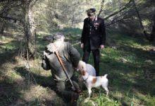 Parco Murgia – Forestale, raccolta tartufi: un altro tesserino falso