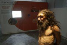 Uomo di Altamura: oggi l'inaugurazione della Rete Museale