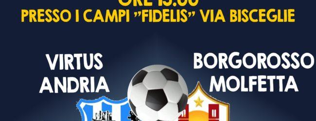 Virtus Andria vs Borgorosso Molfetta: domani la 21esima giornata del campionato