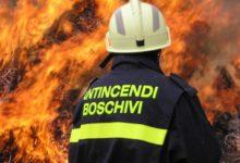 Andria – Operativa ordinanza stato pericolosità per incendi boschivi 2017