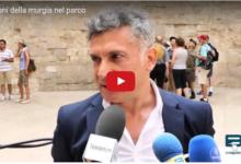 """Andria – Al via la quarta edizione di """"Suoni della Murgia nel Parco"""": presentata a Castel del Monte"""