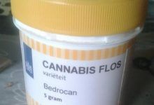 Bari – Cura sclerosi multipla con cannabis, troppa burocrazia