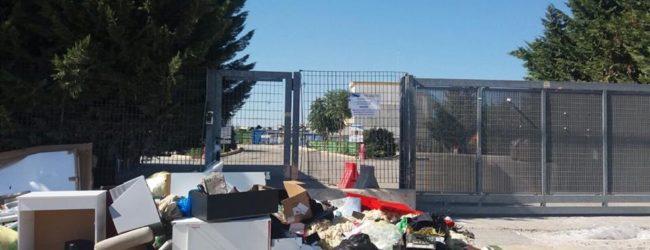 Andria – Disfunzione isola ecologica, Montaruli: possibile informativa in procura