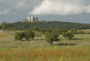 Andria-Il parco nazionale dell' alta murgia istituisce tre premi per tesi di laurea.