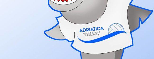 Sport-Volley Femminile, il roster dell'Adriatica Trani
