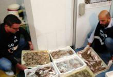 Barletta – In beneficenza 100 kg di prodotti ittici sequestrati nel porto