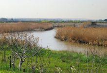Barletta – Fiume Ofanto: finanziati interventi per la tutela e la valorizzazione