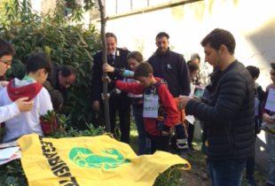 Barletta – Più verde in città nella 'Giornata nazionale degli alberi'