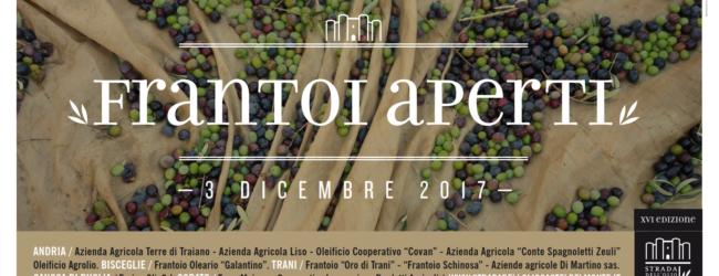 FRANTOI APERTI: domenica 3 dicembre ad Andria, Trani, Canosa, Corato ...