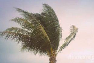 Puglia – Allerta meteo: da domani mattina  in arrivo forti venti