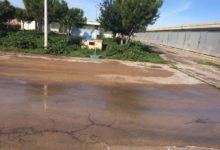 """Barletta – Canile municipale: """"Precarie condizioni igienico-sanitarie"""""""