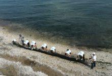 Trani – Volontari in azione: ripulito tratto costa tra castello e Cattedrale