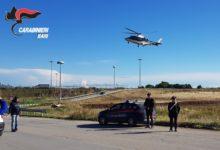 Spinazzola – Al lavoro con il trattore rubato: arrestato dai carabinieri