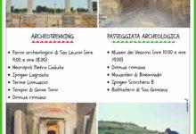 Canosa di Puglia – Storie di cavalieri, principi, tesori millenari il 2 Giugno