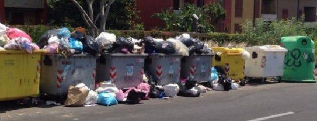 Emergenza rifiuti nei Comuni di Trinitapoli, Margherita di Savoia e San Ferdinando di Puglia