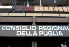 Regione Puglia-Commissione sanità, positivo il parere alle norme per lo smaltimento delle carcasse animali