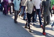 BAT – Accoglienza migranti: il Prefetto incontra i Sindaci della provincia