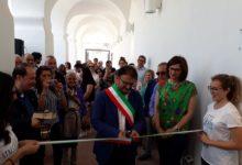 Spinazzola – Inaugurato il Museo Civico