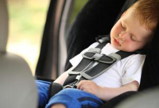 Sen.Dario Damiani (FI) sul disegno di legge per l' obbligo di allarme sui veicoli in presenza di bambini
