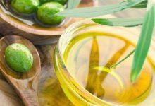 """Andria – Intesa filiera olio di oliva, Guglielmi: """" Il made in Italy a… metà"""""""