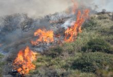 Andria – Catasto aree percorse dal fuoco consultabile online