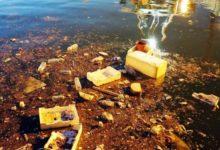 Molfetta – Basta rifiuti in mare: continua la campagna di sensibilizzazione sul marine litter