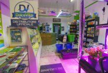 """Puglia – Growshop: +75% nell'ultimo anno, """"cannabis light"""" traina il boom anche nella Bat"""