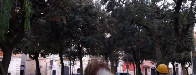 """Barletta – Giardini """"De Nittis"""", interventi di pulizia, verde e manutenzioni"""