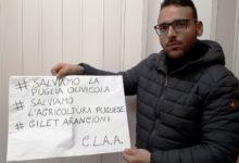 Andria – I liberi agricoltori sul piede di guerra
