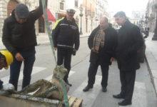 """Barletta – Teatro """"Curci"""", recupero e messa in sicurezza scultura con angeli e stemma della città"""