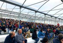 Vivaisti pugliesi pronti a manifestare contro la cattiva gestione della Xylella e l'immobilismo regionale