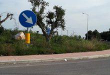 S.P.1 Andria-Trani, massi e alberi pericolosi sulle rotatorie: ma sono a norma?