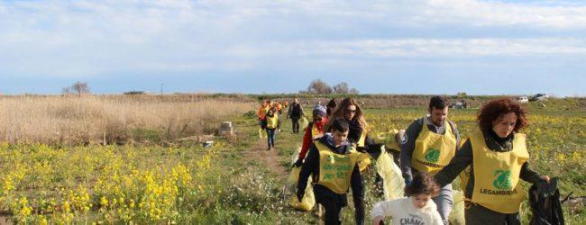 Barletta – Legambiente, passeggiata naturalistica all' Ofanto per le Giornate mondiali delle zone umide. Foto